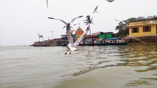 कालिजाई मंदिर - Kalijai Temple Chilika Orissa In Hindi