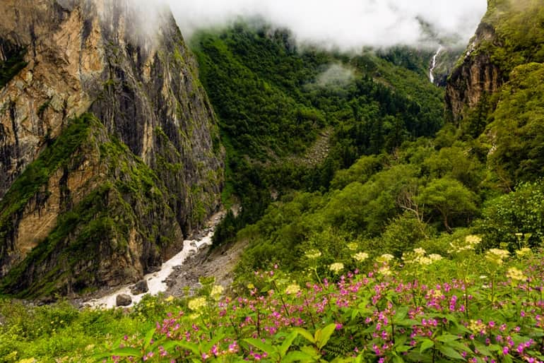 Valley Of Flowers In Hindi
