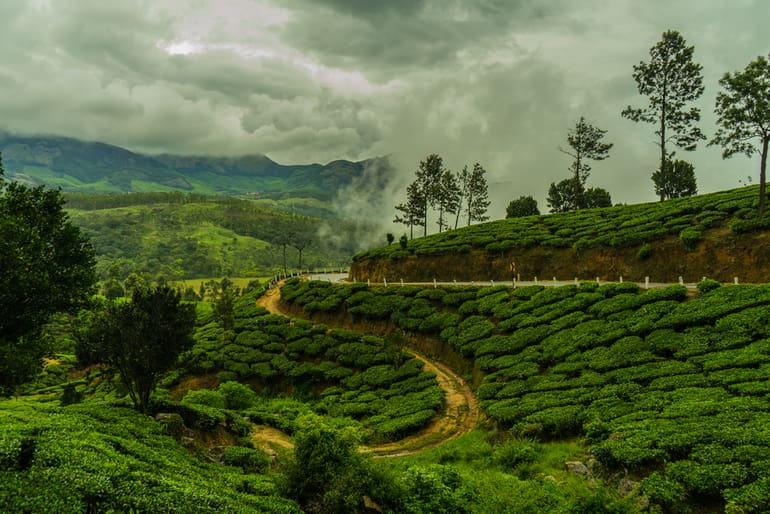 मुन्नार केरल – Munnar Kerala in Hindi