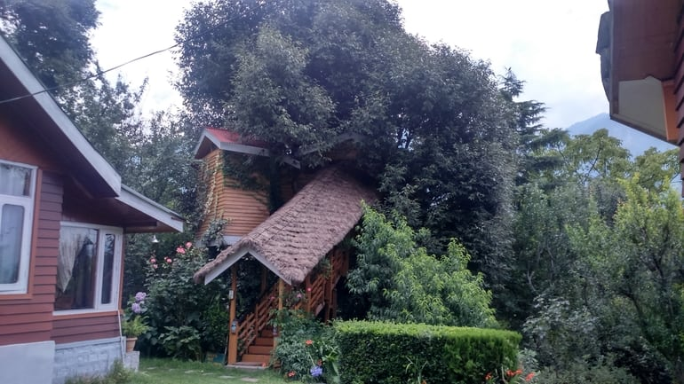 ट्री हाउस कॉटेज - Tree House Cottages in Hindi
